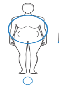 The Circle Body Type