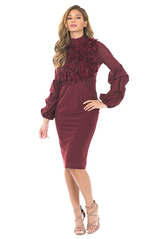 Burgundy Dress With Feathers