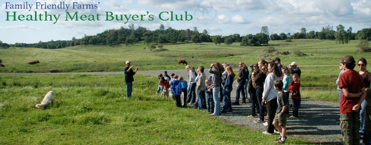 Healthy Meat Buyer's Club