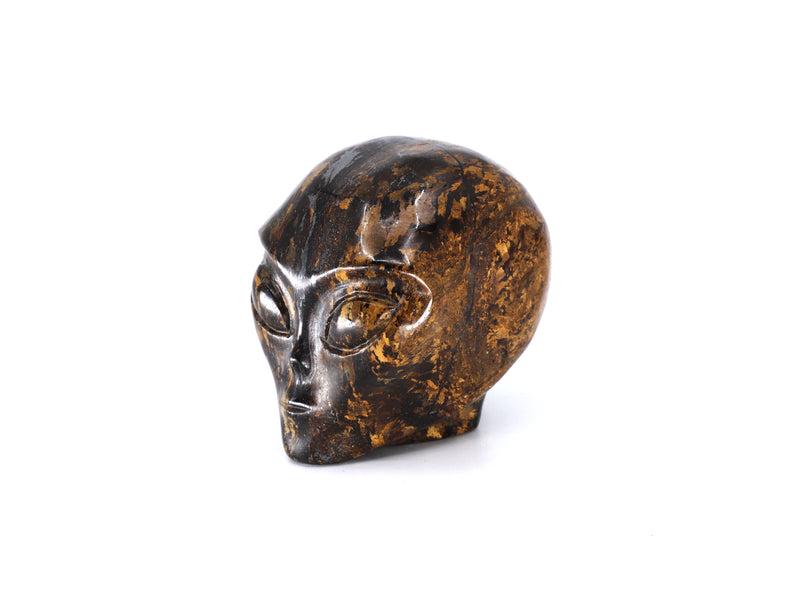 Bronzite Star Being crystal skull - Esoteric Aroma