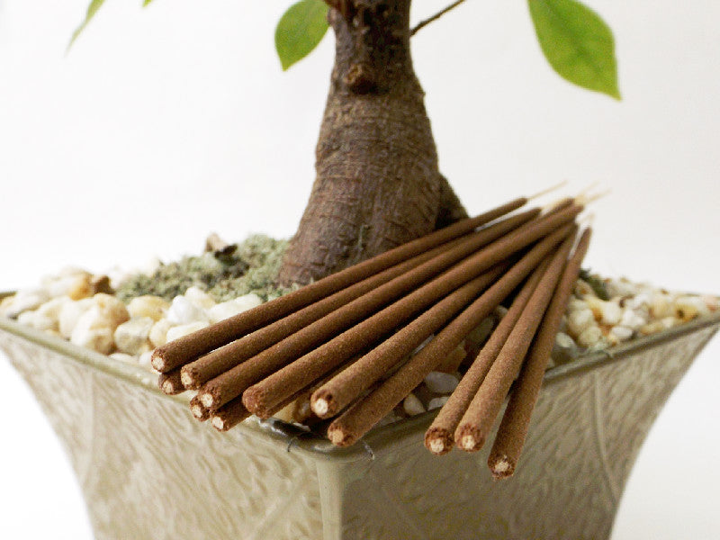 Bodhi Tree Premium Incense Sticks - Esoteric Aroma