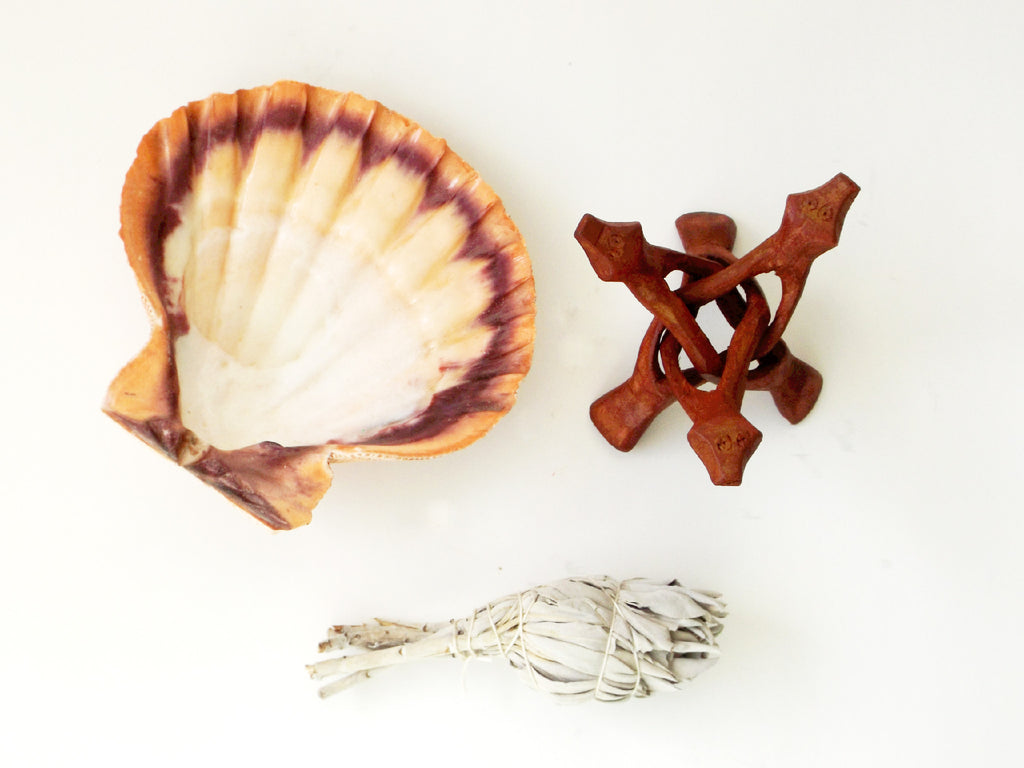 Lion Paw Shell and Sage Kit - Esoteric Aroma