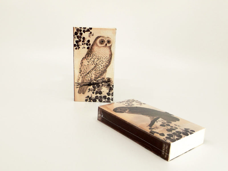 Owl illustration matches - Esoteric Aroma