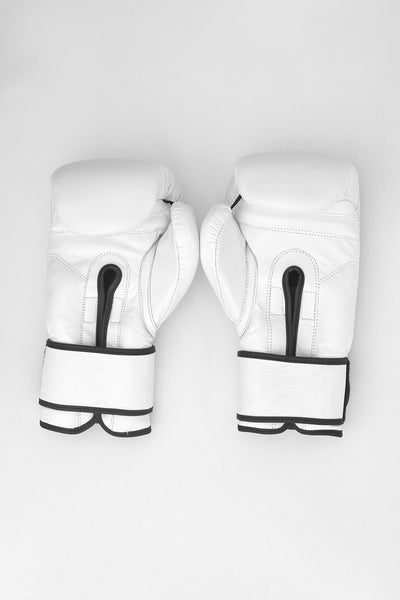 Palm facing upwards boxing gloves.