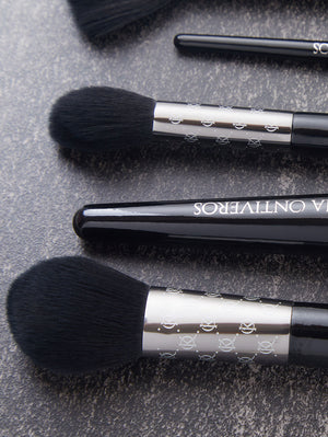 6 pc Luxe Brush Set