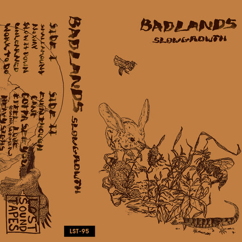 "BADLANDS ""Slow Growth"" cassette tape"