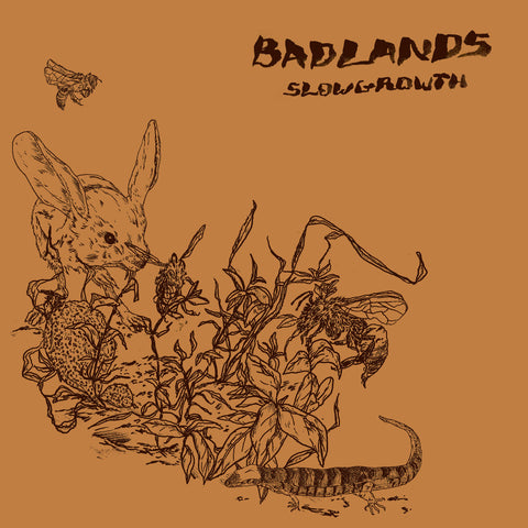 "BADLANDS ""Slow Growth"" CD"