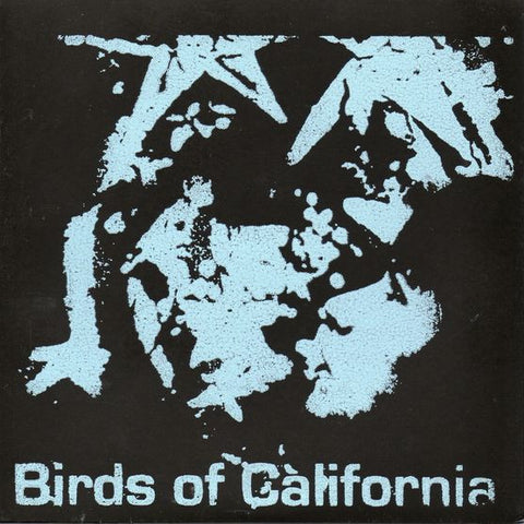"BIRDS OF CALIFORNIA / KRISTIN MESS ""Split"" seven inch record"