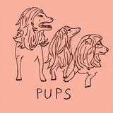 "PUPS ""Month Long Sleep"" seven inch record"
