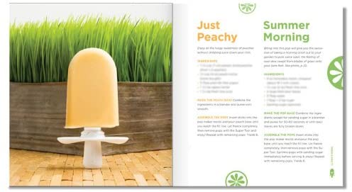 ZOKU Quick Pops Recipe Book - ZK106