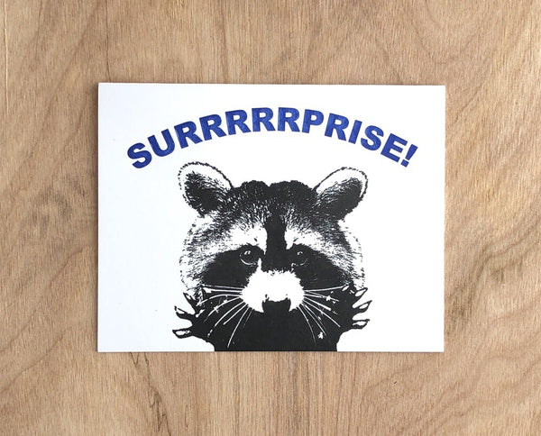 Surprise Raccoon