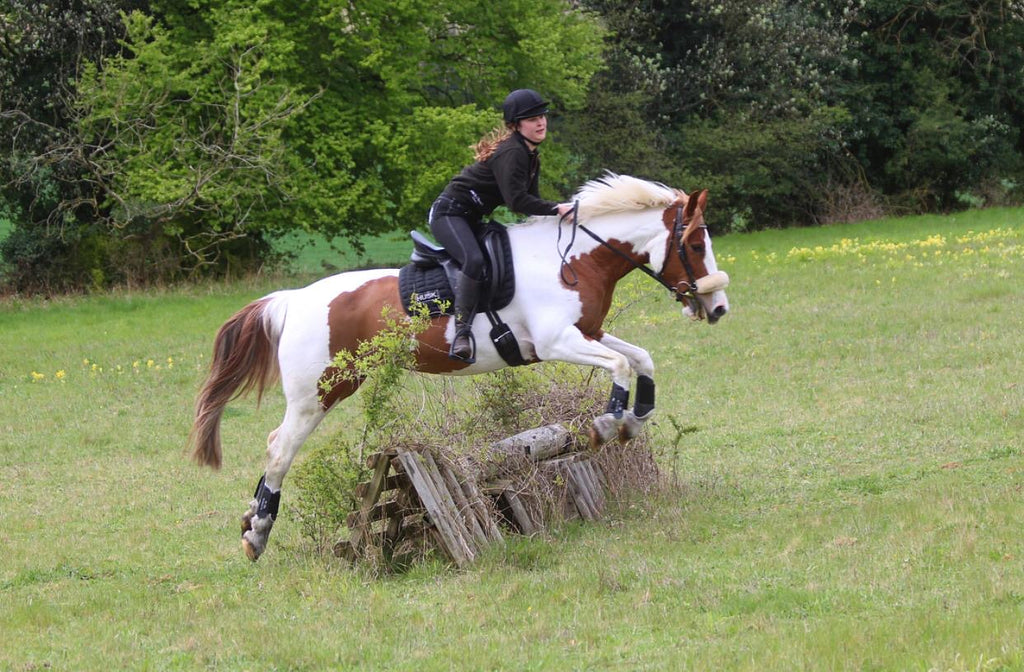 How HUSK gave my horse her happiness back by Poppy Marsom
