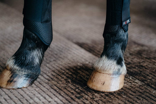 HUSK Hybrid Air Horse Boot