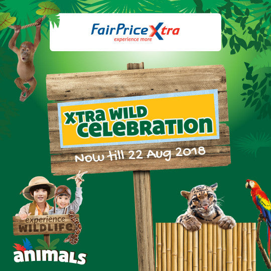 Owl Readers Club x FairPrice Xtra Wild Celebration - Free Animals Cards Giveaway!