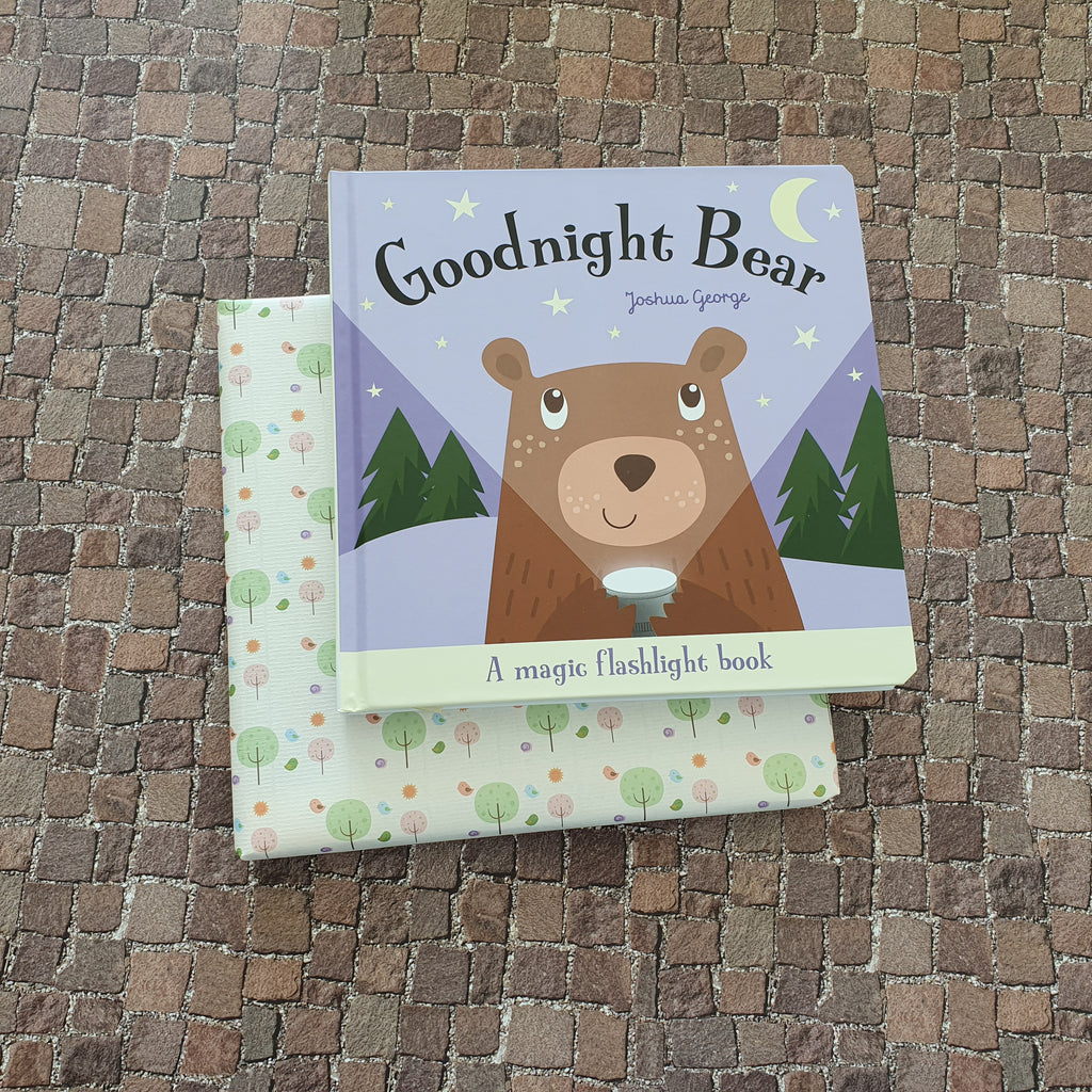 Goodnight Bear - A magic torch book