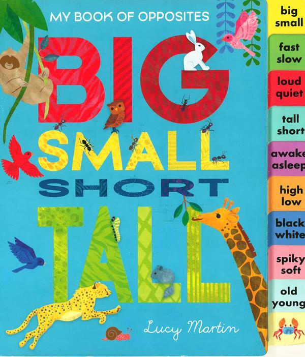 My Book of Opposites - Big Small Short Tall
