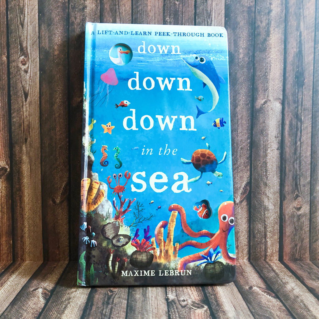Down Down Down in the Sea - Lift and Learn Peek-through Book - owlreadersclub