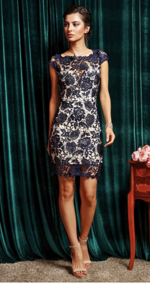 Lovely Lady Navy and Nude Lace Dress