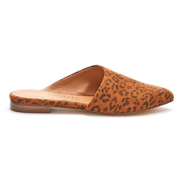 Xander Tan Leopard Mule by Matisse Coconuts Collection