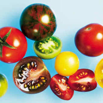 ROASTED CHERRY TOMATOES WITH SUMMER HERBS