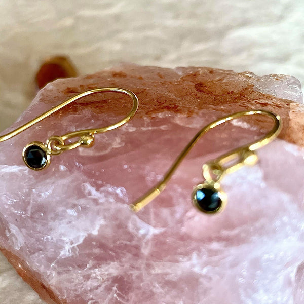 Black Diamond Hook Earrings