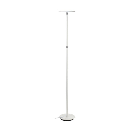 Brightech Store String Lights Floor Lamps Magnifier