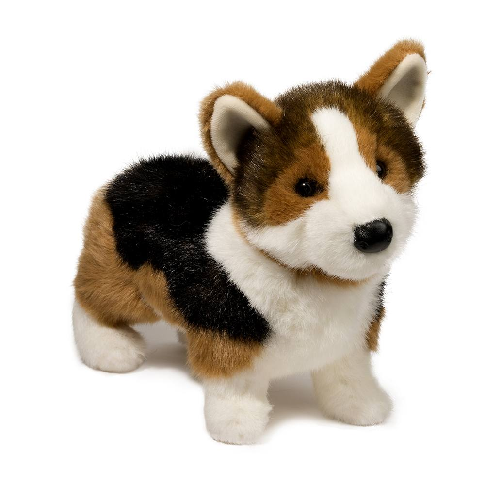 Kirby Tri-Colored Corgi