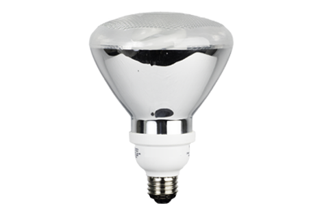 BlueMax™ 23w PAR38 CFL Floodlight, Replaces 90w Halogen Par38 Floodlight