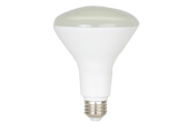 "BlueMax™ 11w ""R"" LED FloodLight, Replaces 60w Incandescent Bulb"
