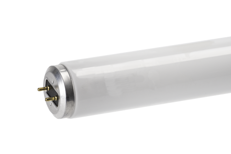 "Spectra™ 5600 24"" F20-T12 MB Fluorescent Tube"