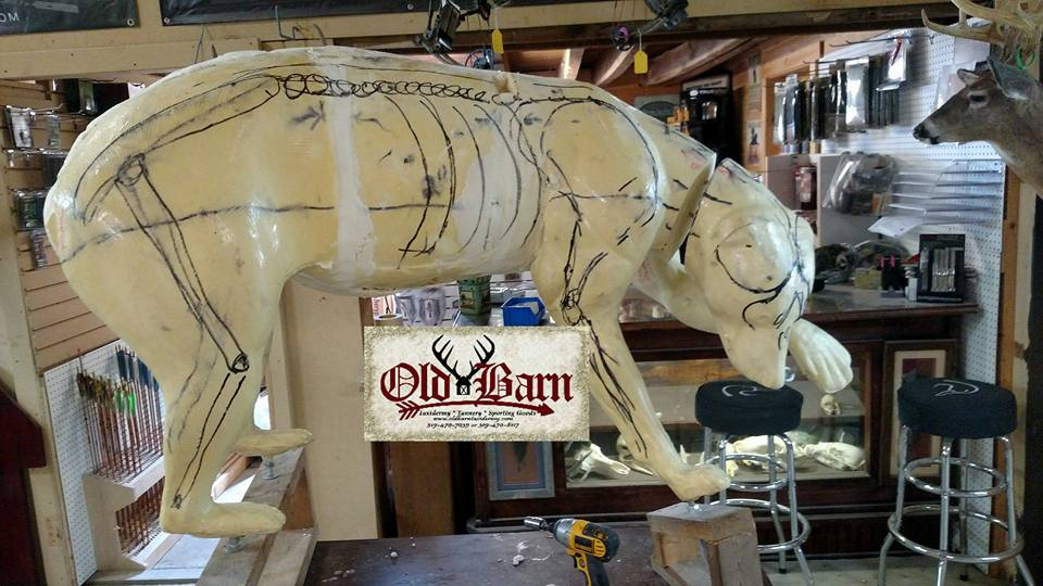 How to use Old Barn Taxidermy's 2 Part Polyurethane Foam (VIDEO)