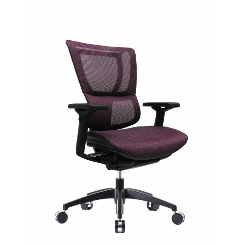 iOO Eurotech Ergonomic Office Chair in Dark Red Mesh and Black Frame,  Angled View