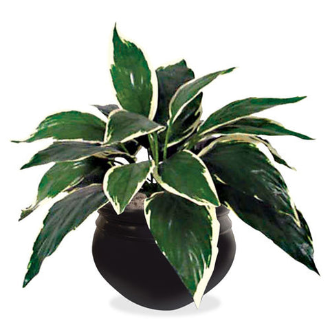 NuDell Artificial Dracaena Plant (NUDT7960)