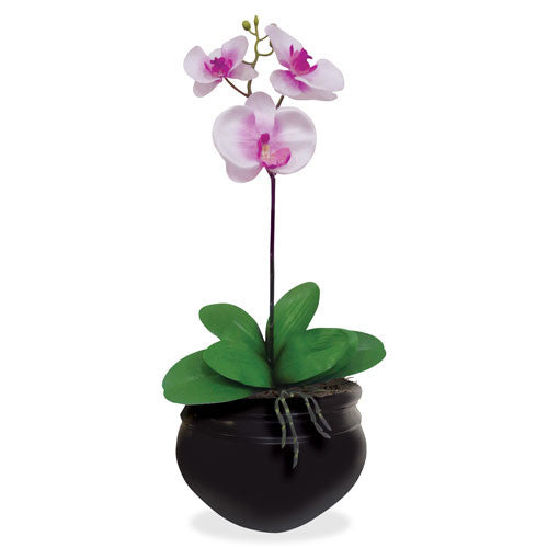 NuDell Artificial Orchid Plant (NUDT7980)