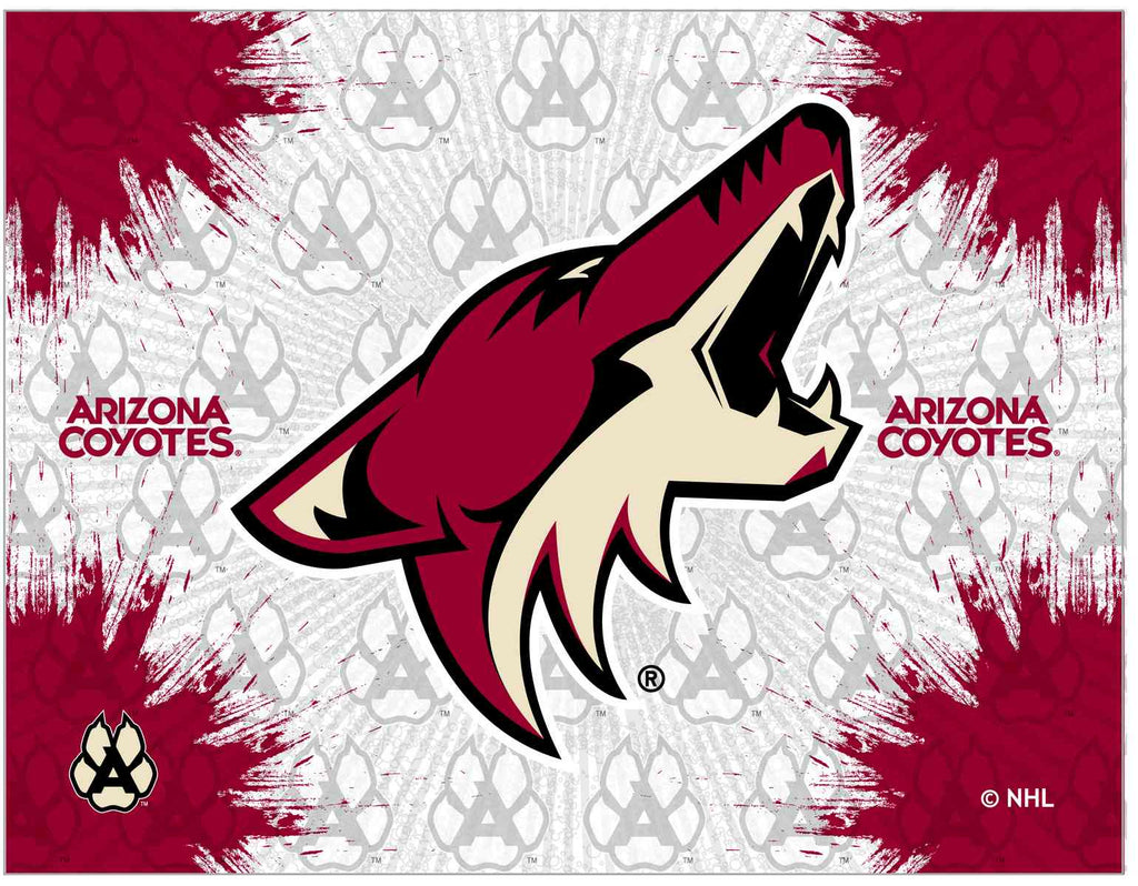 Arizona Coyotes 15