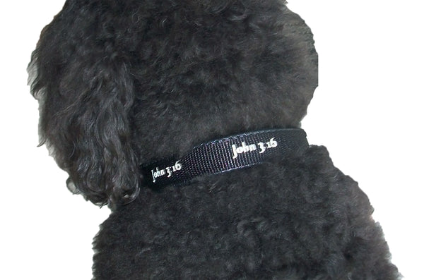 Padded Collar - John 3:16 - Black