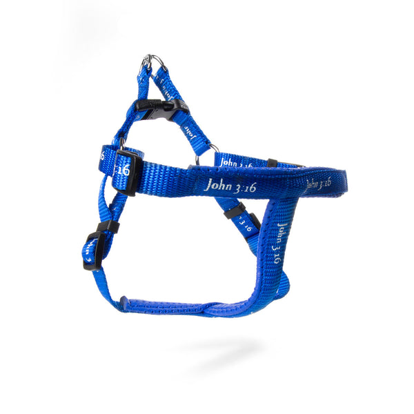 Harness - John 3:16 - Blue