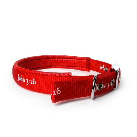 Padded Collar - John 3:16 - Red
