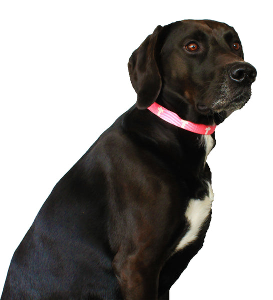 Non-Padded Collar - Cross - Pink