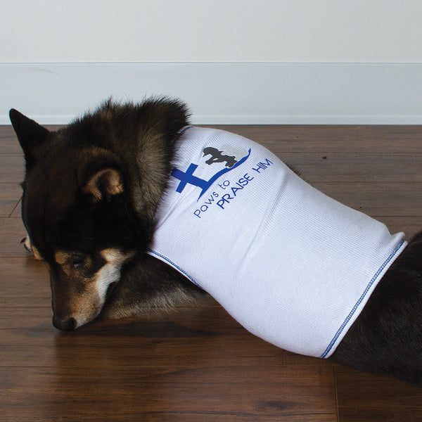 Shirt - Paws to Praise (Dogs) - White/Blue