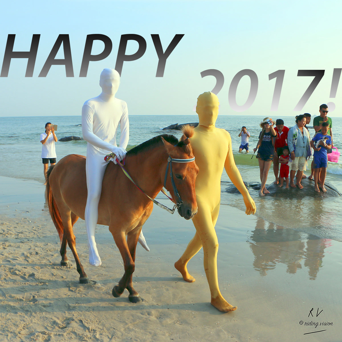 Happy New Year from Riding.Vision!