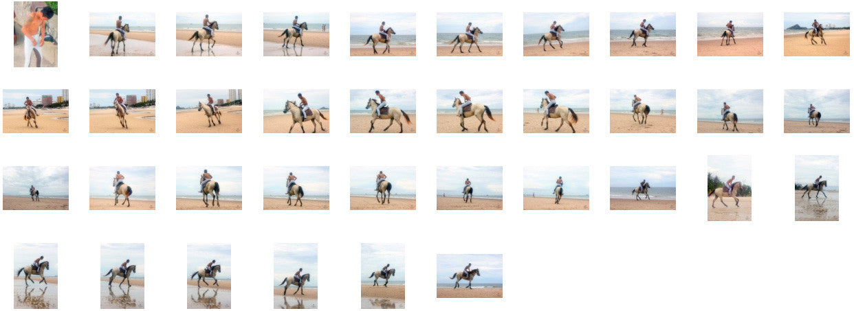 Thaksin in Jodhpurs Riding with Saddle on Buckskin Horse, Part 1 - Riding.Vision