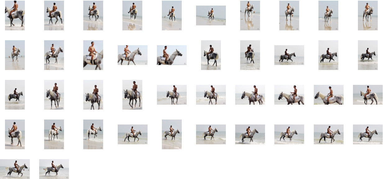 Kai in Brown Sprinter Shorts Riding with Saddle on White Arabian, Part 3 - Riding.Vision