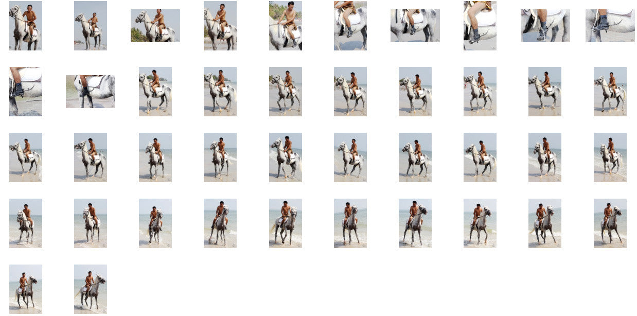 Kai in Brown Sprinter Shorts Riding with Saddle on White Arabian, Part 5 - Riding.Vision
