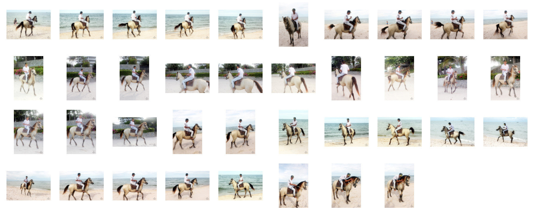 Thaksin in Jodhpurs Riding with Saddle on Buckskin Horse, Part 5 - Riding.Vision