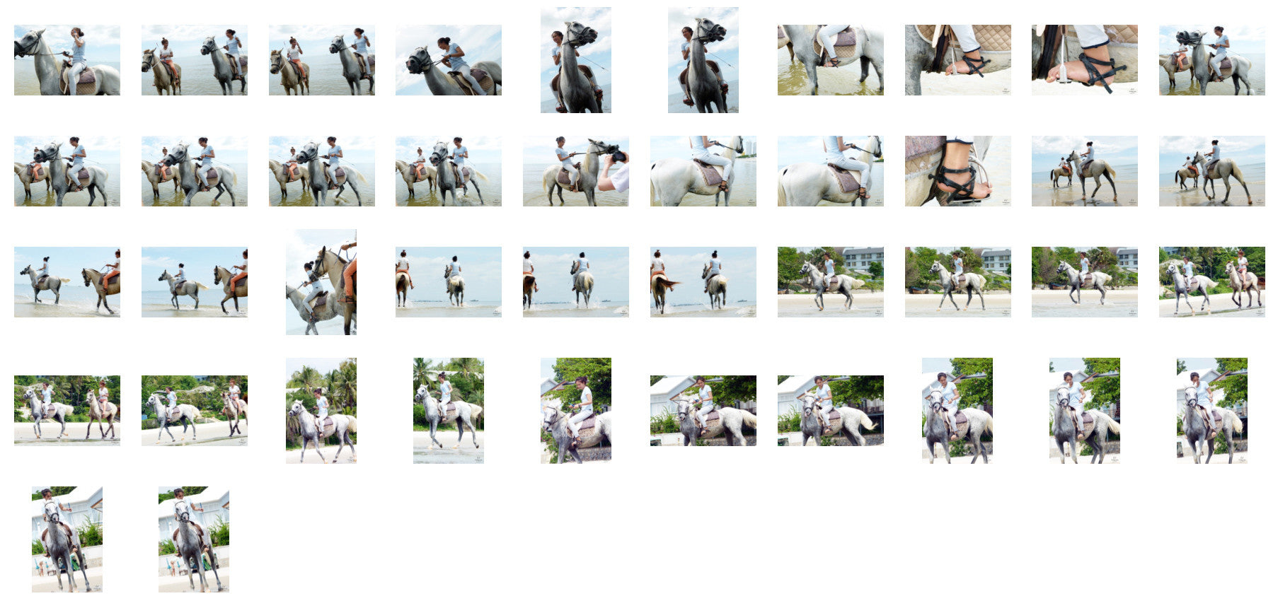 Som in Jodhpurs Riding with Saddle on White Arabian Horse, Part 7 - Riding.Vision