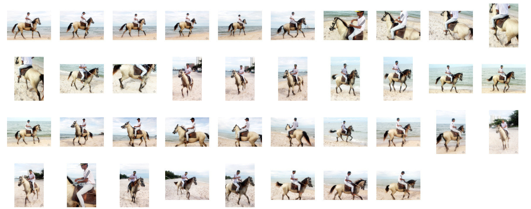 Thaksin in Jodhpurs Riding with Saddle on Buckskin Horse, Part 7 - Riding.Vision