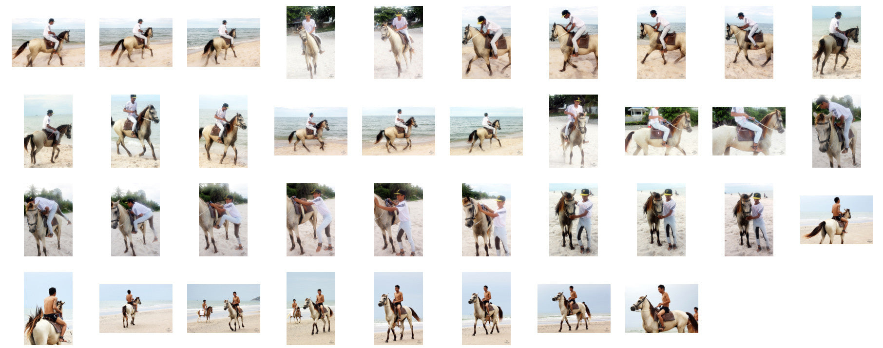 Thaksin in Jodhpurs Riding with Saddle on Buckskin Horse, Part 8 - Riding.Vision