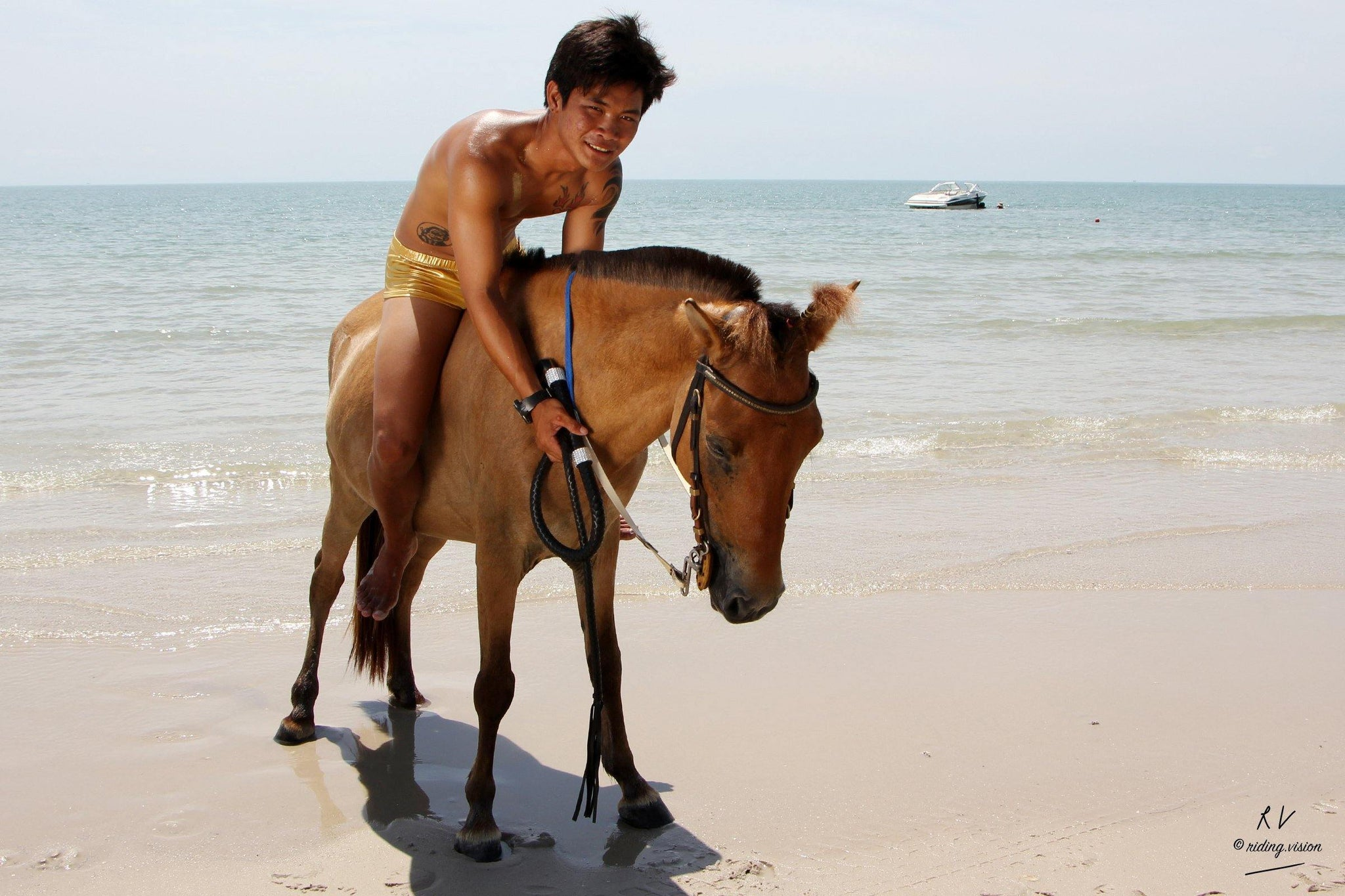 Free Sample Gallery: David in Golden Speedos Riding Bareback on Golden Pony, Part 2 - Riding.Vision