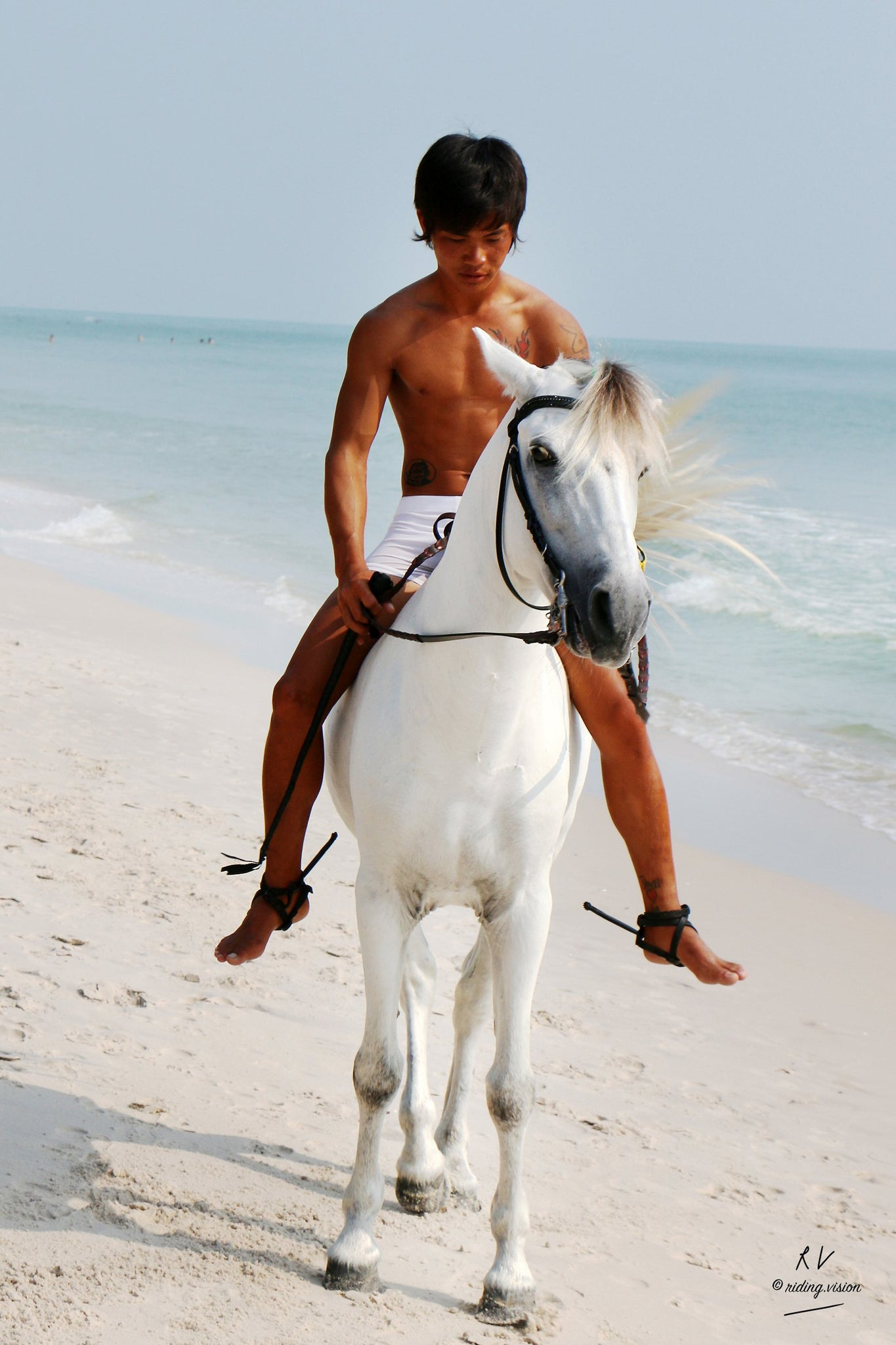 Free Sample Gallery: David in White Spandex Shorts Riding Bareback on White Pony, Part 6 - Riding.Vision